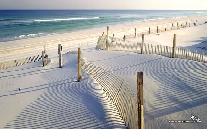 White-sandy-beach-wallpaper-1680x1050