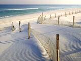 Beach/Shore
