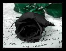 Yavanna's black rose