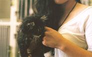 Adorable-black-cat-cute-fluffy-Favim.com-470985