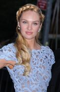 Candice-Swanepoel-Heidi-Braided-Updo