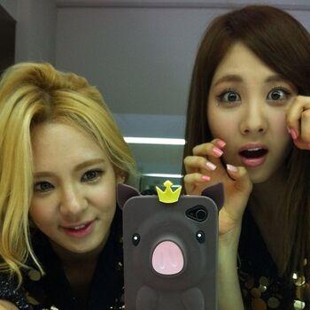 Seohyo2