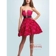 Deiondra's dress