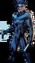 2505245-nightwing