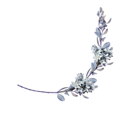 Hyacinths with a laurel branch png by amalus-d4jhzppright