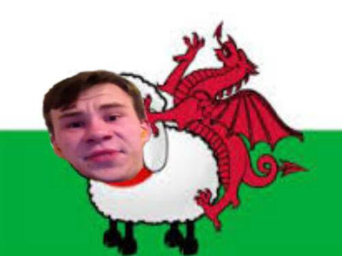 WalesFlag