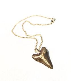 Alphonse Domville's necklace