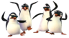 Four penguins