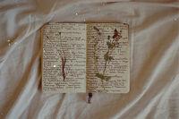 Jasmine's notebook