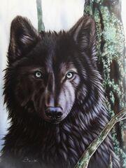 1-black-wolf-sandi-baker