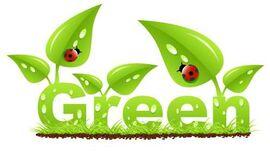 Green-ladybug