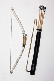 Kaitlyn's Bow and Arrow