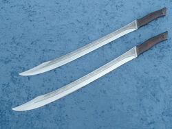 Twin Short Swordsa