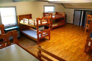 Bear's Dorm