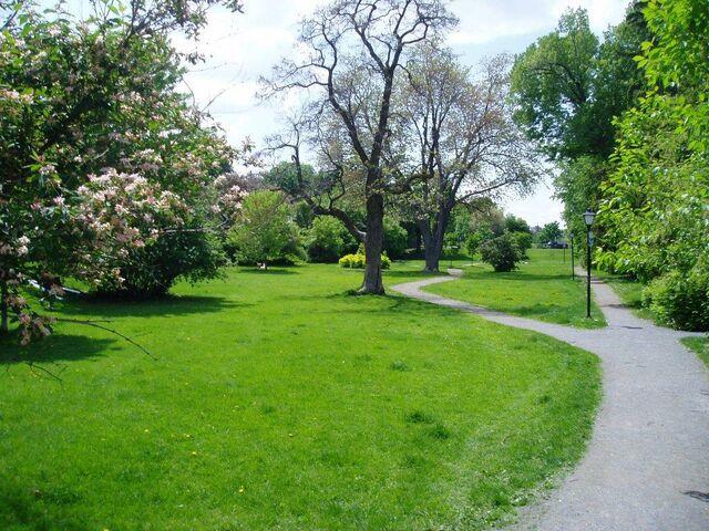 File:Park.jpg