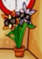 Flor enigmática