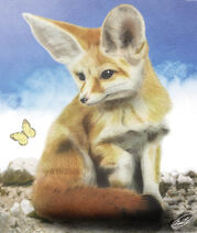 Fennec fox by dersheltie