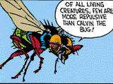 Calvin the Bug