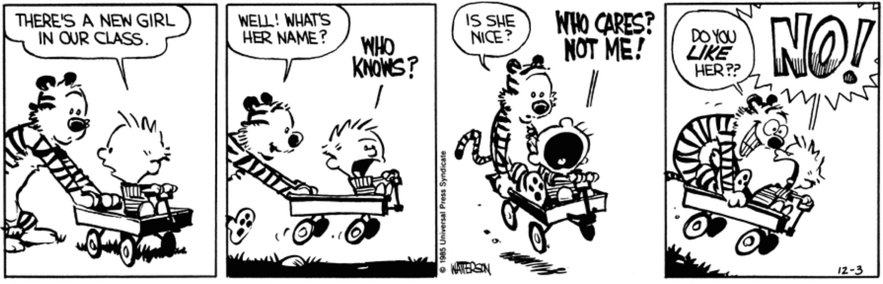 Story Arcs The Calvin And Hobbes Wiki Fandom Powered By Wikia