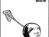 Lacrosse Stick