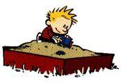 Calvin's Sandbox.