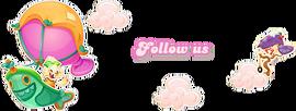 Jenny-Follow Us