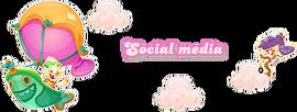 Jenny-Social media