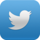 TwitterSocialAppIcon