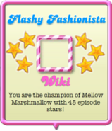 Flashy Fashionista