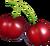 Cherry new