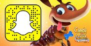 Dachs-Snapchat