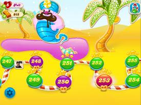 Palm Sugar Oasis2
