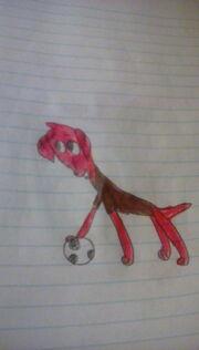 Soccer dash hound