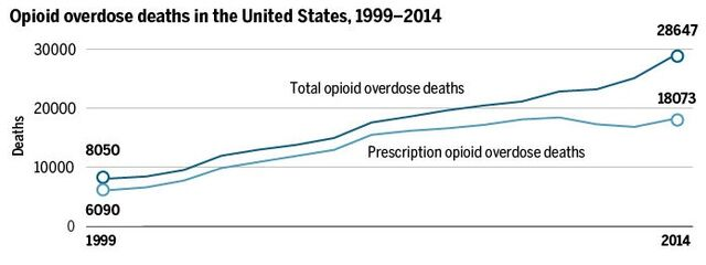 File:Opioid overdose deaths in the United States. 1999-2014.jpg