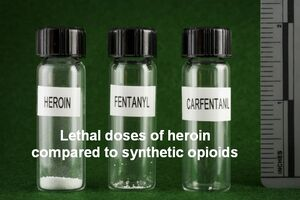 Lethal doses of heroin compared to synthetic opioids