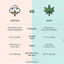 Cotton versus hemp