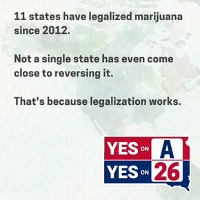 South Dakota 2020 November ballot initiatives flyer