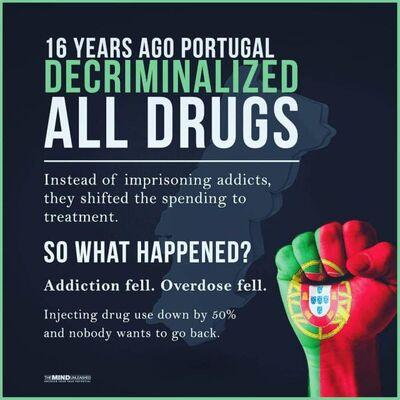 Portugal's decriminalization. Original