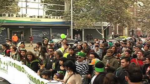 Cosechando Libertad 2011