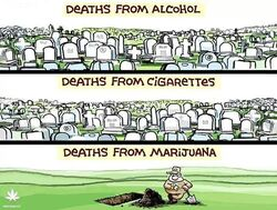 Deaths from alcohol, cigarettes, and marijuana