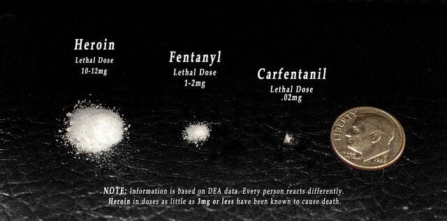 Heroin fentanyl carfentanil. Lethal dose comparison