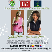 Paraguay 2020 May 2 online 3