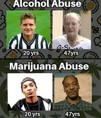 Alcohol abuse, marijuana abuse