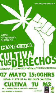 Valdivia 2011 GMM Chile