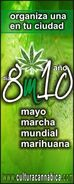 2010 GMM Spanish