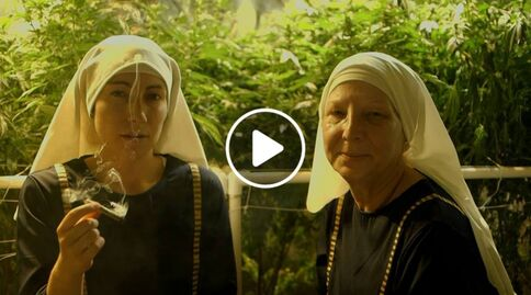 File:Weed Nuns.jpg