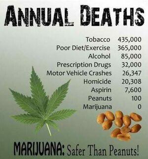 Marijuana is safer than peanuts