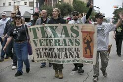 Austin Texas 2016 Nov 11 veterans, medical marijuana marchers