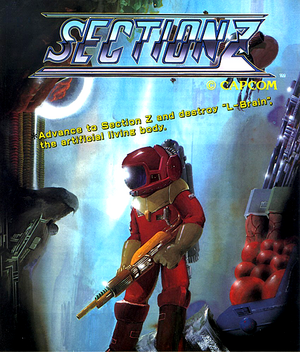 SectionZFlyer