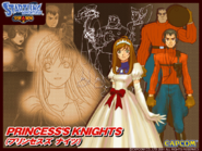 Startling Adventures - Princess's Knights